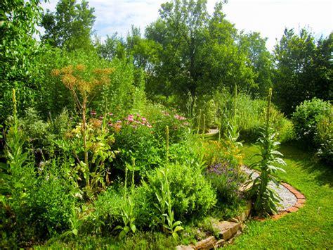 Natur Im Garten (2006) Bilder  Tv Wunschliste