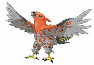 Talonflame Images | Pokemon Images