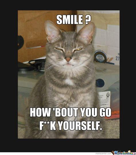Rude Funny Memes - rude cat by irdeaner meme center