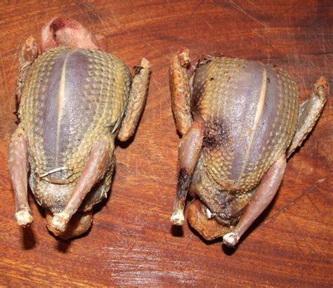 comment cuisiner l esturgeon tourterelle à l 39 embeurrée de choux compotée d 39 échalotes et