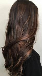How To Add Highlights To Dark Brown Hair At Home – BelleTag