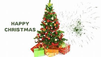 Christmas Tree Xmas Animation Card Cards Trees