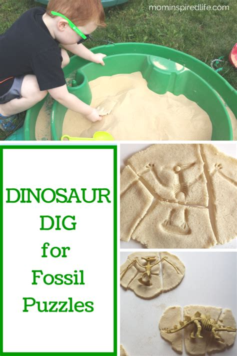 dinosaur dig for fossil puzzles learning for 522 | 2b15df5220102b81606c1374f1a69a14