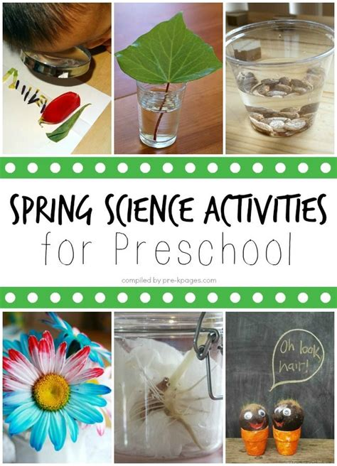 science activities for preschoolers pictures of 972 | a7f12e0331b0aeb10f0851a2252e3b60