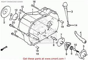 Honda Atc125m 1985  F  Usa Right Crankcase Cover