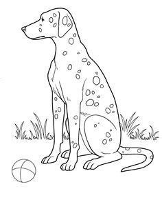dogcoloringpages teenagers coloring pages disegni