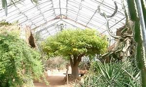 Jardin Botanique De Lyon : jardin botanique 31 photos botanical gardens parc de ~ Farleysfitness.com Idées de Décoration