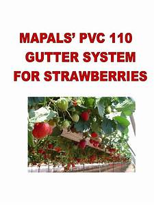 Mapal Pvc 110 Manual For Strawberries
