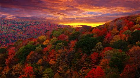 1080p Fall Desktop Backgrounds Hd by Fall Wallpapers 1920x1080 Hd 1080p Desktop Backgrounds