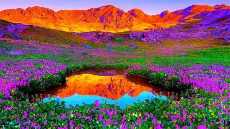 3d Brilliant Colors Of Nature Hd Wallpaper