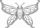 Moth Coloring Pages Printable Getdrawings Getcolorings sketch template