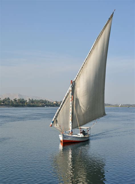 Felucca Boat felucca