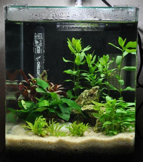 achat aquarium eau de mer nano aquarium et poissons pour aquarium nano aquarium tous les messages sur nano aquarium une