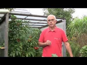 Tomaten Düngen Hausmittel : ackerschachtelhalm videolike ~ Whattoseeinmadrid.com Haus und Dekorationen