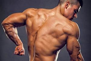 Ultimate Triceps Training  Increase Your Arm Size In 16