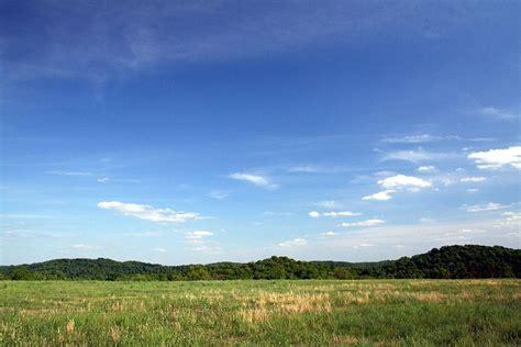 file sky view forestwander jpg wikimedia commons