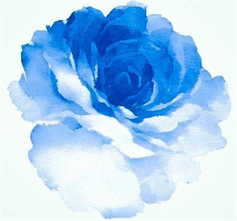 blue watercolor rose wedding ideas watercolor tattoo