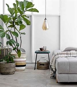 Plantes Pour Chambre : quelles plantes d int rieur installer dans une chambre coucher ~ Melissatoandfro.com Idées de Décoration