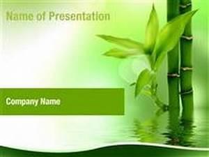 zen bamboo forest powerpoint template backgrounds With presentation zen powerpoint templates