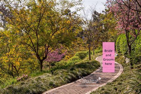 savoring the sweet balboa park s japanese friendship