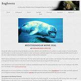 Mediterranean Monk Seal Food Web | 250 x 250 jpeg 16kB
