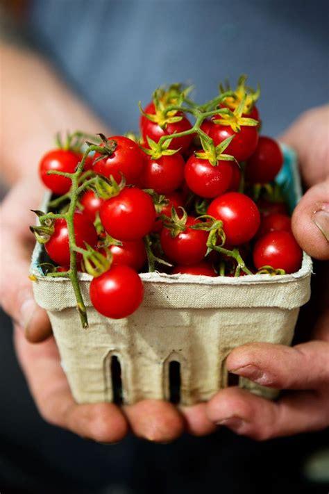 Cuisine Iké œ 646 Best Colour Images On Fruit And