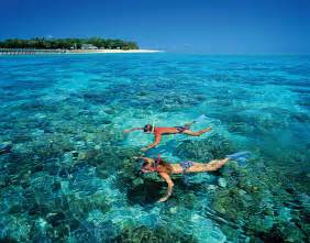 get to know australia s great barrier reef globetrotting
