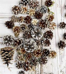 How, To, Use, Pine, Cones, For, A, Unique, Fall, Mason, Jar