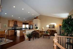 Vaulted Great Room Ideas Photo Gallery