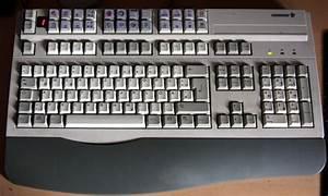 Wie Fängt Man Eine Maus : maus oder tastatur oder beides blogparade cimddwc ~ Markanthonyermac.com Haus und Dekorationen