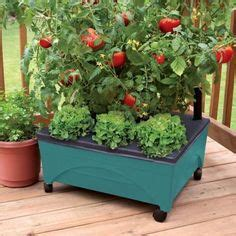 raised garden bed kits raised garden beds and raised