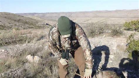 Longfellow Ranch, TX. Mule Deer - YouTube