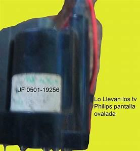 Electr U00f3nica Delgado