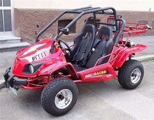 Kart Mit Straßenzulassung : buggy 250ccm gokart cart 2 sitzer mit strassenzulassung ~ Kayakingforconservation.com Haus und Dekorationen