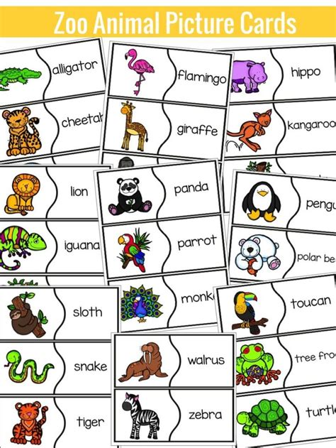 zoo animal activities clip library 682 | 983883