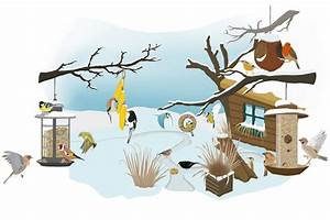 Vögel Im Winter Kindergarten : v gel im winter wer frisst was nabu ~ Whattoseeinmadrid.com Haus und Dekorationen