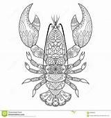 Lobster Coloring Homard Tattoo Kunst Aragosta Linea Dell Arte Konst sketch template