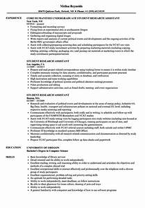 Sample Resume For It Student With No Experience Research Assistant Resume Ipasphoto
