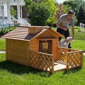 luxury dog house dog houses pinterest With luxury outdoor dog house