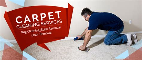 Carpet Cleaning Santa Clara, Ca  4087963215  Steam Clean. Password Tracker Deluxe Cat 5 Ethernet Wiring. Accounting Certificate Courses. Marketing And Planning Systems. Reviews Of Prosper Loans Movie Trading Company. Monitor Server Performance Glogowski Law Firm. Replace Aluminum Windows Site5 Hosting Review. Sap Hr Certification Material. Dr Crawford Orthodontist Immigration And Visa