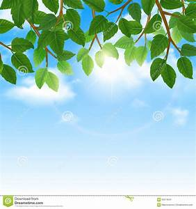 Green Leaves Border Nature Background Royalty-Free Stock ...