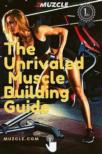 How To Build Muscle For Women  The Complete Guide  2020