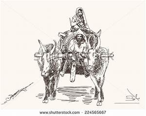 India Farm Animal Stock Images, Royalty-Free Images ...