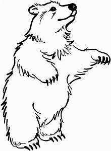 Free Black Bear Outline, Download Free Clip Art, Free Clip ...