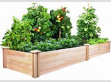Raised Vegetable Garden Beds Let's Grow Vegetables