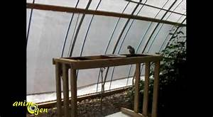 Oiseaux Decoration Exterieur : balcon vgtalis free best deco mur exterieur jardin amnager un carr potager sur le balcon ou ~ Melissatoandfro.com Idées de Décoration