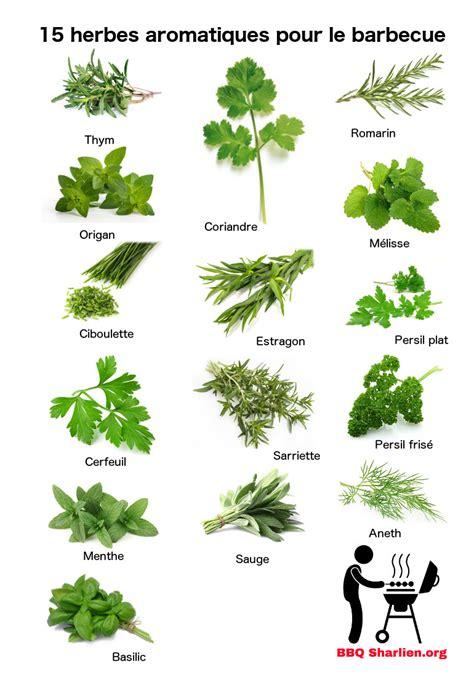 cuisine au grill 15 herbes aromatiques fraiches pour les grillades
