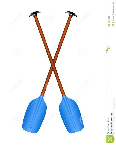 sport oars royalty  stock photography image