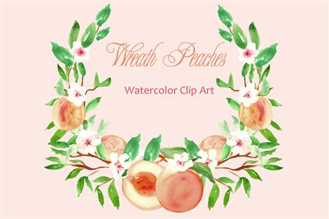 peach wreath watercolor clip art graphics  creative market