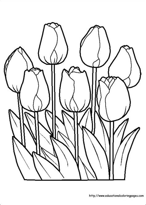 flower coloring coloring pages   kids